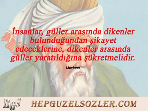 Dini Aşk Sözleri - İnsanlar güller arasında dikenler bulunduğundan şikayet edeceklerine dikenler...